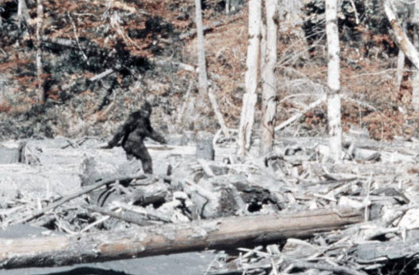 Bigfoot in Virginia