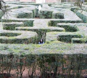 Strange ghost seen in back of maze