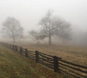 Ghostly fog during a day tour at Colonial Ghosts