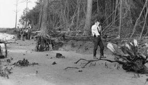 Newport News police detective David Seals photographs the scene where Robin Edwards' body was found.