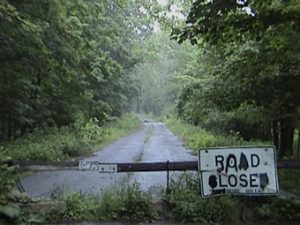 photo shows an overgrown road with a road closed sign