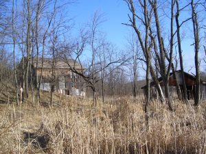 photo shows an overgrown barn in hell town